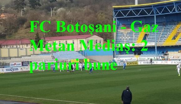 FC Botoșani - Gaz Metan Mediaș:2 pariuri bune